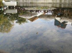 Blick vom Restaurant am Wasser in den Himmel